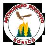 Protezione Civile Sonico Logo